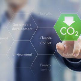 Carbon Emission Avoidance